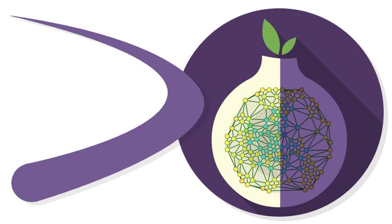 DECODE OS logo